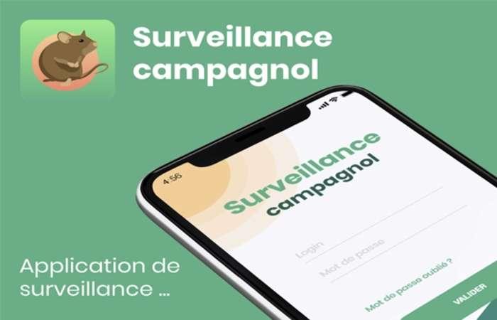 Surveillance campagnol